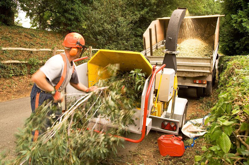 Woodchip Suppliers