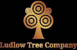 Ludlow Tree Company Tree Surgeons