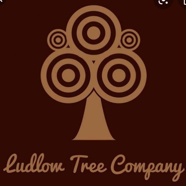 Ludlow tree company Darren Tipton 👍